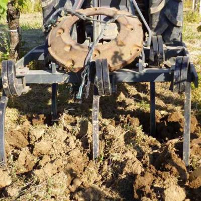 Le travail du sol